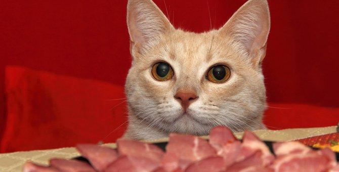 猫に牛肉を食べさせても大丈夫?正しい与え方