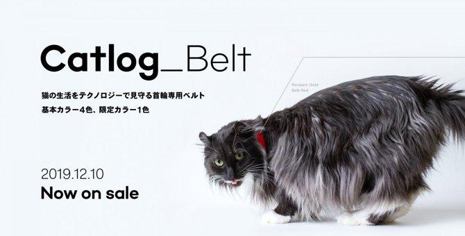 次世代の首輪!Catlog Pendantがベルトの単体販売を開始!