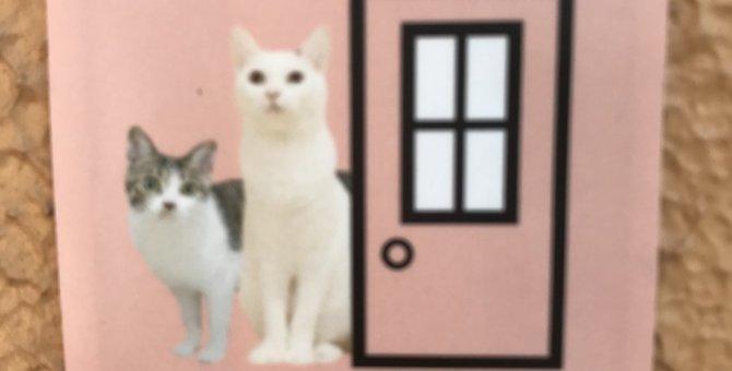 玄関に付けて、脱走防止に一役!『猫が居ますシール』