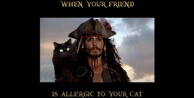 アウル・キティは船長と絡みたい!「パイレーツ・オブ・カリビアン3」