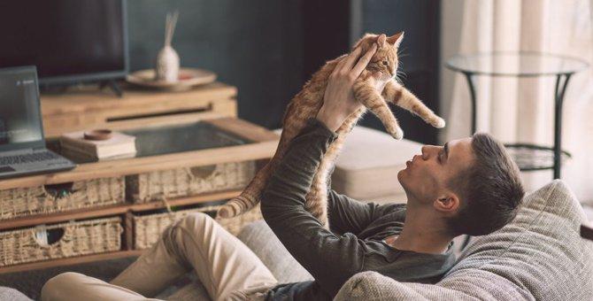 『一人暮らしで猫と一緒に暮らす』なら注意したいこと5選