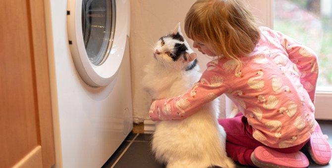 猫を近づけてはいけない家電6選