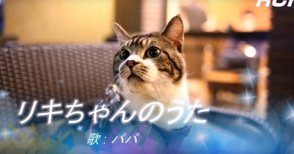 猫ちゃんパロディで空耳アワー♪