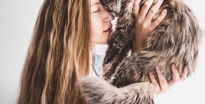 猫の寿命は『毛の長さ』で変わる?長毛種の方が短命ってホント?