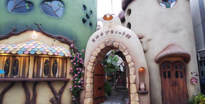 おしゃれな店内で猫とまったり♡吉祥寺の猫カフェ『てまりのおしろ』に行ってきました!