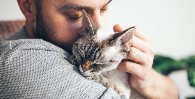 『幸せを感じている猫』がする仕草5つ