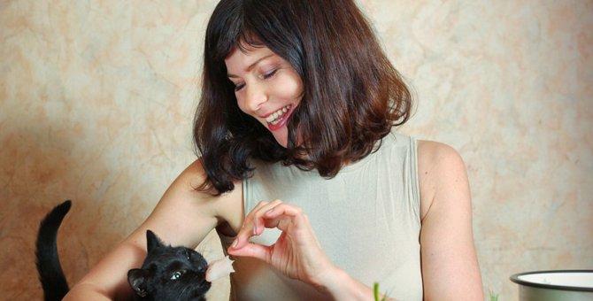 猫にセロリを与えない方が良い理由と食べたときの対処法