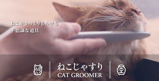 猫じゃすりで猫をうっとりさせちゃおう!商品情報と使い方