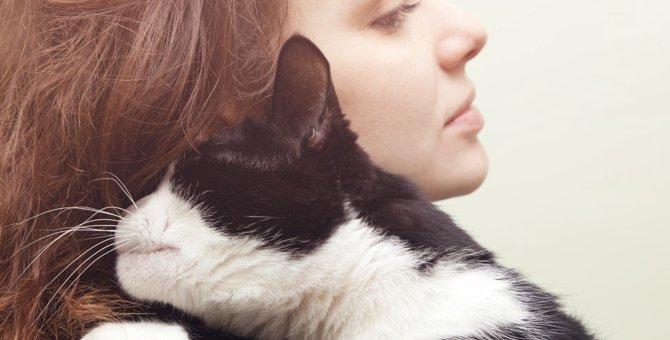 猫が飼い主にべったりとくっついてくる4つの理由とその心理
