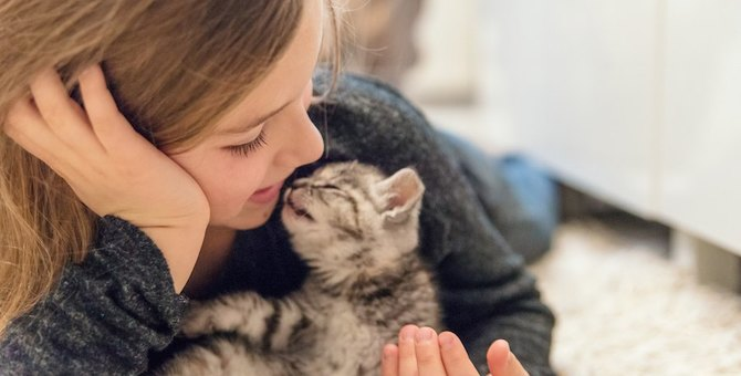 あなたは猫に好かれている?チェック項目9つ