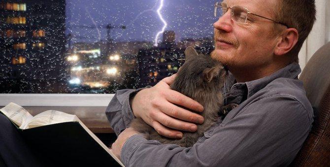 豪雨や雷、花火…怖い音が苦手な猫にしてあげたいケア3つ