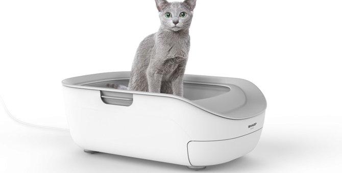7月発売!SHARPのスマホと連動した猫のトイレ『ペットケアモニター』
