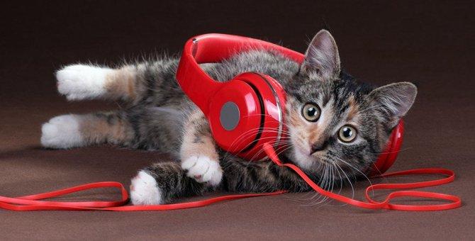 猫の耳が付いたヘッドホンがかわいい!おすすめ商品6選