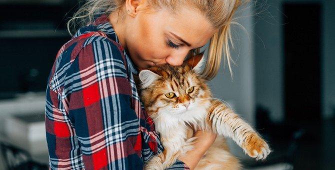 猫がジェラシーを感じる4つの事
