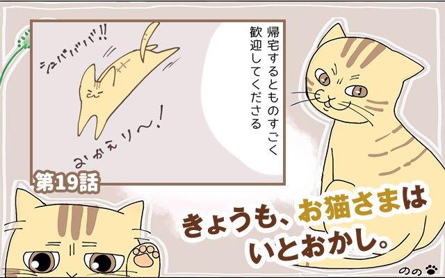 きょうも、お猫さまはいとをかし。【第19話】「勘違いするなよ」
