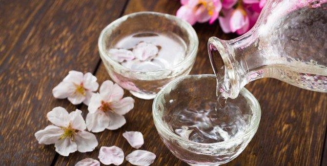 猫ラベルの日本酒が急増中!飲んでもよし!眺めるのもよし!おすすめ商品9選