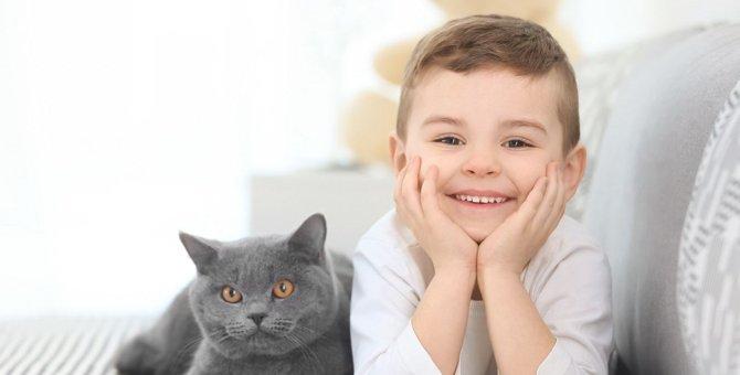 猫のいる部屋にオススメのにおい対策5つ