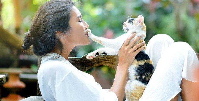 猫にするべきではない!NGな愛情表現3選