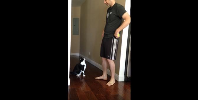 【え!?なにその体勢!?】抱っこ大好き猫さんのポーズ、こんなの見たことない!