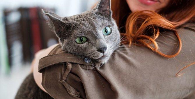 気付いてあげて!猫が『ストレス』を感じるシチュエーション10選