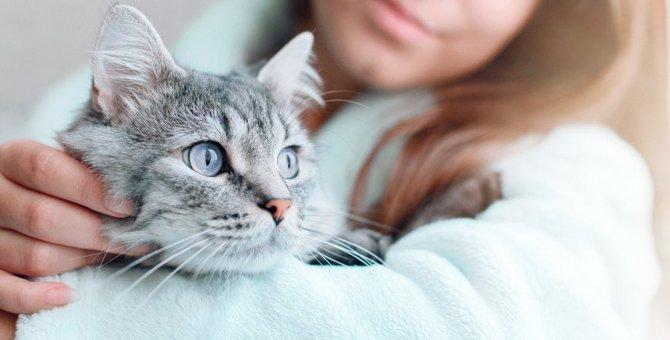 病気の猫と最期まで幸せに暮らすためにしたいこと5つ