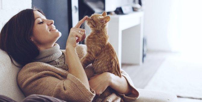 猫にも花粉症があります!くしゃみだけじゃない症状に、注意警報発令中!!
