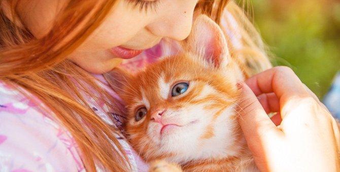 猫を家族に迎えた理由ランキングTOP4!どんなきっかけで飼うことを決意する?