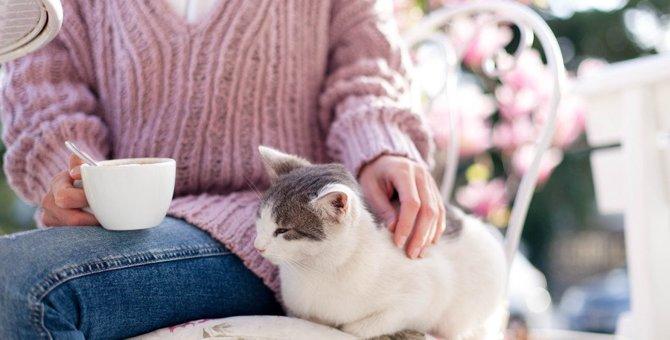 猫が『撫でて♡』と近寄りたくなる人の共通点3つ