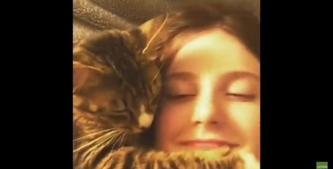 飼い主さん大好きなの!いつまでも顔面ハグをし続けたい猫ちゃん