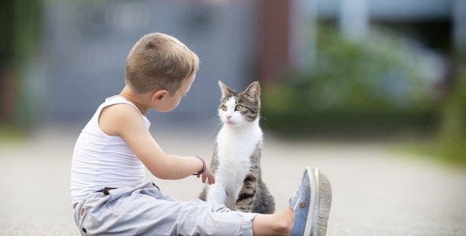 猫が『返事をする相手を選んでいる』って本当?