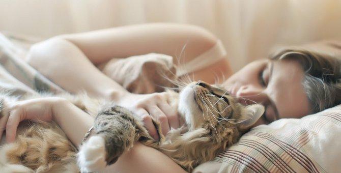 猫が飼い主の『顔の近くで寝る』3つの理由