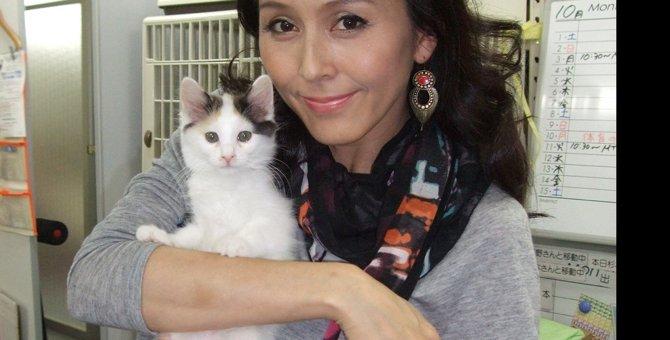 杉本彩さんが飼っている猫の名前や種類