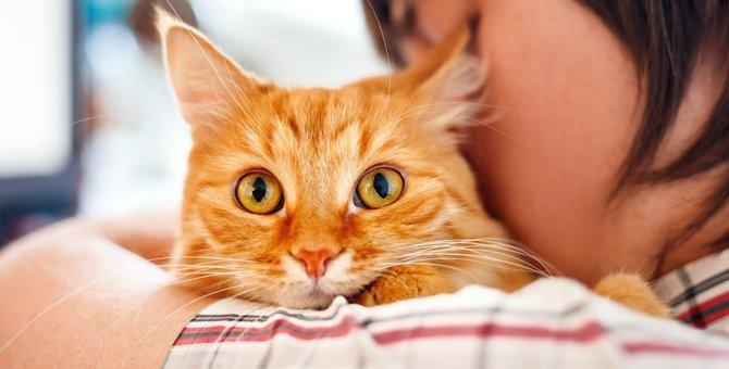 愛猫が病状末期になったときの心構え5つ