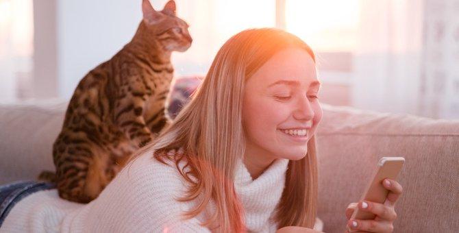 猫がなつきすぎる人の4つの共通点と仲良くなるためのコツ