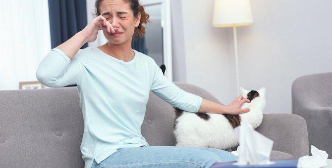 猫アレルギーでアナフィラキシーショック!注意したいアレルギーの症状