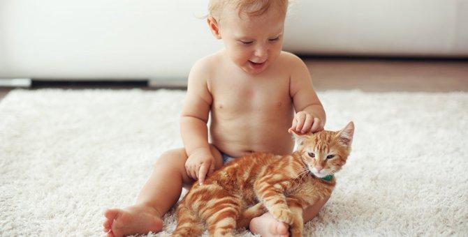 猫が『人間の赤ちゃん』にとる優しい行動3選!同居する際に注意すべきこととは?