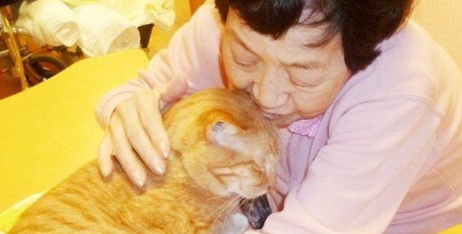 ずっと一緒にいたい!ペットと共に入居できる老人ホームで幸せな余生を