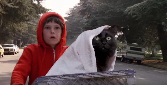 アウルキティはやっぱり宇宙人かも!?「E.T.」の名場面を再現