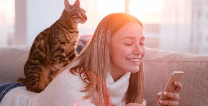 猫が飼い主を『子供扱い』している時にする仕草8つ