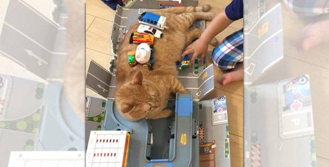 「一緒に遊ぶニャー!」立体駐車場と化した猫さんにほっこり♡