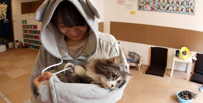猫用ポケットの付いた服「ニャンガルパーカー」とは
