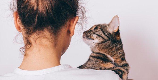 猫が不幸になってしまう飼い主の特徴3選
