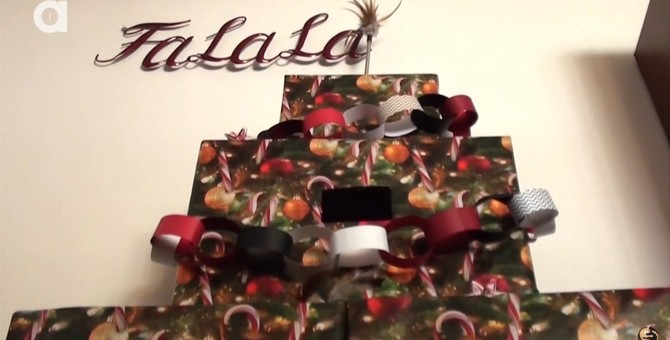 壊されるならばいっそ…猫が遊べるクリスマスツリー作り
