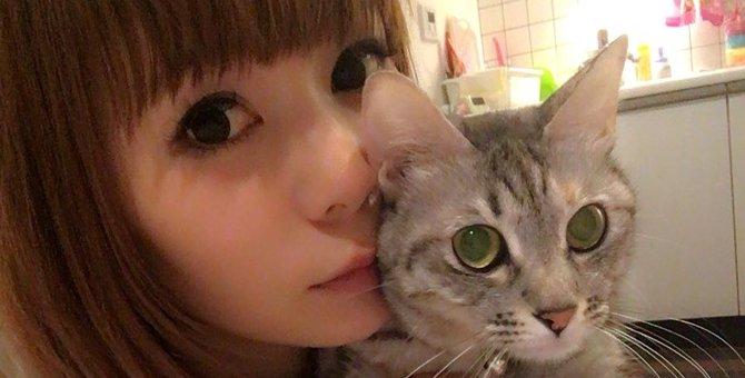 しょこたんこと中川翔子さんは猫好きで有名!飼っているニャンコまとめ