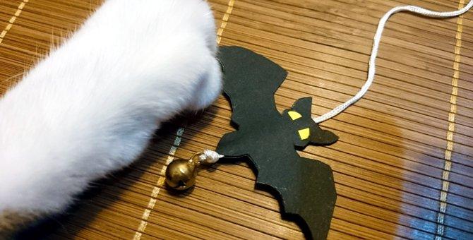 魔女猫に大変身♪ハロウィンで使える猫用帽子を手作りしてみよう!