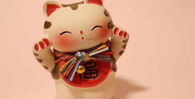 おしゃれな猫雑貨を買うならココ!おすすめ店舗4選