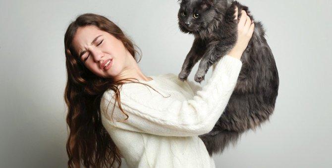 猫の『体臭』が強くなる5つの理由と対処法