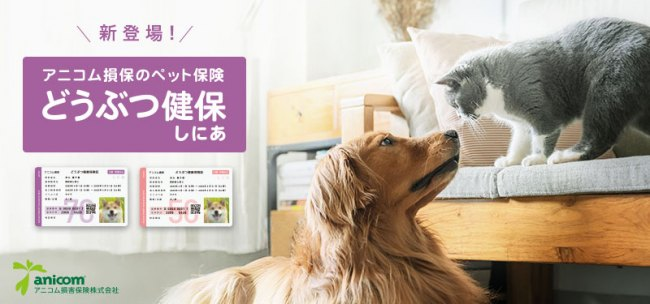 日本初!シニア専用のペット保険!