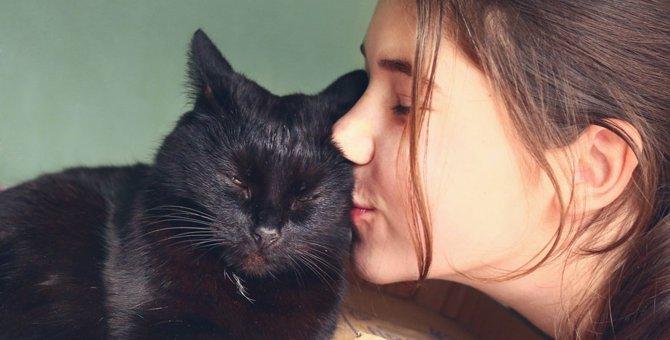 黒猫の値段と種類などによる違い