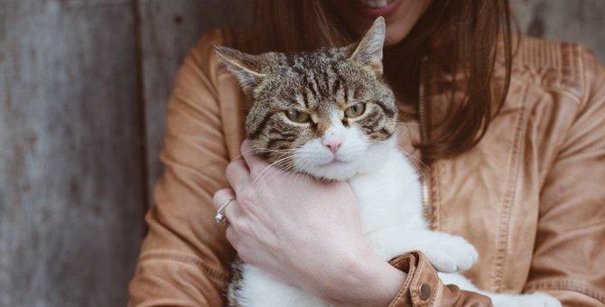 猫が人間不信になるかもしれない9つの原因